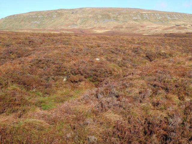 Yorkshire - Mickle Fell