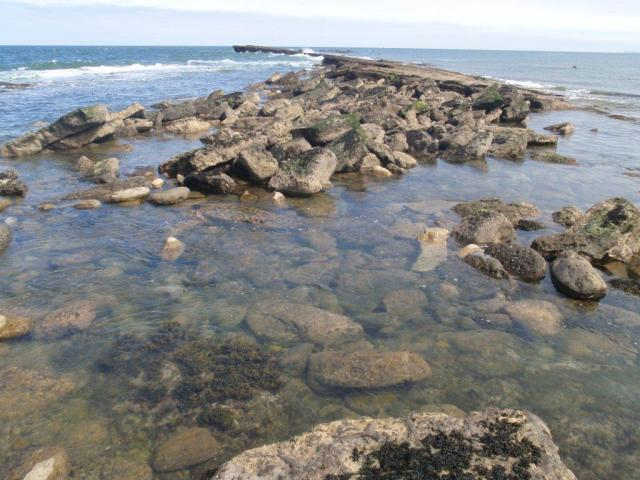 North Riding - East - Filey Brigg Island