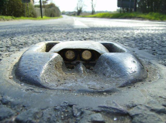Cats Eyes (2)
